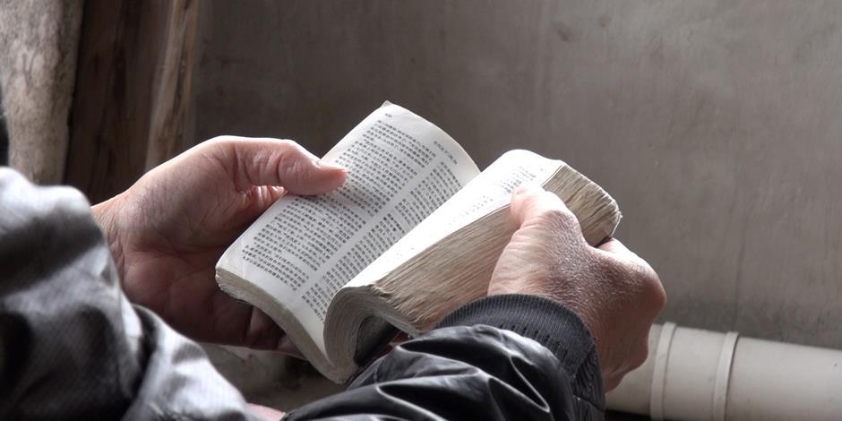 I slutet av mars 2017 hade kinas största tryckeri i Nanjing tryckt över 160 miljoner biblar, bland annat 68 miljoner kinesiska biblar.